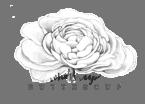 SKC_WUB_Logo_FINALsketch_transparent